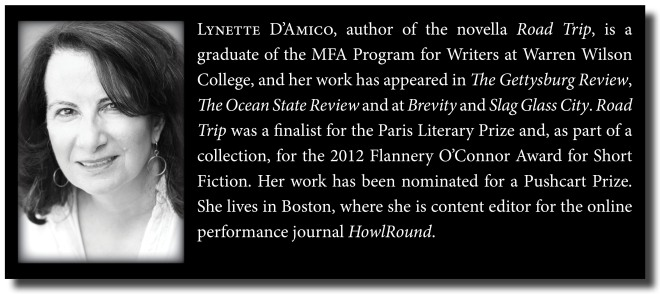 Lynette DAmico Author Page